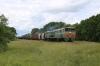 BCh 2TE10M-3551B/A run through Liotcy with a freight