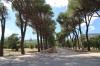 Spain, El Escorial - Park and Gardens of the Casita del Principe