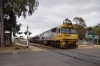 "PN GE Cv40-9i NR Class, NR53 shunts the car carrier off the ""Overland"" at Adelaide Parklands"