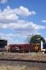 Engenco's Parkes scrapline - Comeng/MLW CE615 80 Class, 8023