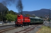 Tasmania Transport Museum, Glenorchy - EE SRKT, Y Class, Y4 performs a photo run-by with our private charter