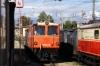 Novog Shed at St Polten Alpenbahnhof - 2095010 & 1099001