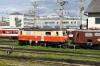 Novog Shed at St Polten Alpenbahnhof -  1099001 & 1099010