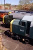 40012 & 40013 at Barrow Hill