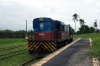 CBTU Alco RS8 6005 runs round at Ceara Mirim after arriving with the 0944 Natal - Ceara Mirim