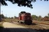 BDZ Sulzer 55116 prepares to depart Svishtov with 24205 1238 Svishtov - Levski