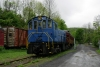 Ex LIRR Alco S1, now Catskill Mountain RR #407 rests at the CMRR's Phoenicia site