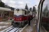Budapest Children's Railway - MAV Mk45-2002 at Szepjuhaszne with 232 1103 Szechenyihegy - Huvosvolgy