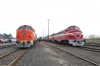 Side by side at Tpolca, after simultaneous arrivals, (L) Nohabs M61-019, 459021, (459022) & M61-017 lead MAV Nostalgia's Vulcan Fast charter - 13292 0855 Kelenfold - Tapolca & (R)  M61-001, M61-006, M61-010 & M61-020 lead the Panorama Fast - 13294 0855 Kelenfold - Tapolca