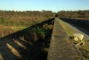Conisbrough Viaduct on a sunny Spring afternoon