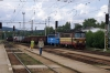 CD Cargo 230054/025 pass through Svetla nad Sazavou with a freight