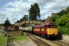 31466 at Parkend with the 1607 Parkend - Lydney Jct (73001 rear)