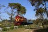 Alco DL537's A9101 (front) & A9105 (rear) at Kaiafa during a photo-stop with 7352 1006 Pirgos - Kalamata section of the Peloponnese Excursion