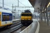 NS 1743 arrives into Utrecht with 5654 1521 Zwolle - Utrecht