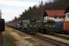 SZ 664117 & 664118 wait to depart Borovnica with freights
