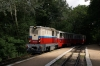 Budapest Childrens Railway - Mk45-2003 arrives into Janoshegy with 31237 1010 Huvosvolgy - Szechenyihegy