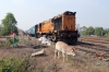 BNDM WDM3A 16119 departs Sambalpur Jn with 58131 0815 Rourkela Jn - Puri