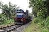 ED WDG3A 13513 departs Cherukara Halt with 56362 0520 Kottayam - Nilambur Road