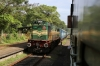 GOC WDG3A 13194 arrives into Kilikollur with 56331 0755 Punalur - Quillon Jn