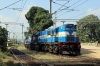 R WDG3A's 13404/13595 wait to depart Ambodala with a freight