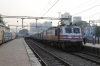 BRC WAP5's 30094/30058 BRC (T&T) wait to depart Mumbai Central with 12951 1700 Mumbai Central - New Delhi Rajdhani while classmate BRC WAP5 30061 waits with 12921 1755 Mumbai Central - Surat