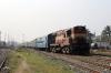 MGS WDM3A 18844 departs Sakri Jn with 12562 2035 (PP) New Delhi Jn - Jaynagar; running just the 18h30m late!