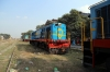 Newly arrived at Sakri Jn - NKE YDM4's, after attention at Izatnagar, 6465, 6530 & 6514