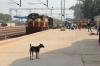 VSKP WDM3D 11514 at Mahasamund with 58530 2155 (P) Visakhapatnam Jn - Raipur Jn