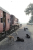 FL YDM4 6655 at Khambli Ghat with 09602 0610 Marwar Jn - Mavli Jn