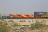 Brand new GE built ROZA WDG4G 49015 stands at Marwar Jn with a southbound double-stack container train