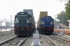 VTA WDG3A's 14876 & 14877 stand alongside each other at Marwar Jn as they wait to head north with double-stack container trains