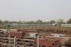 ABR WDM3A 14117 departs Sabarmati Jn with 19412 0625 Ajmer Jn - Ahmedabad Jn