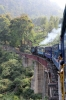 ONR X Class steam 37397 leads 56137 1400 Udagamandalam - Mettupalayam between Coonoor & Runneymede