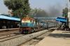 ET WDM3A/WDM3D combo 16095/11316 run through Sihora Road with 11066 1310 (P) Darbhanga Jn - Lokmanya Tilak Terminus