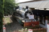 Steam Loco #723 stands at the back entrance to Katni Jn station, hidden away by trees