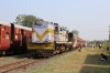 VRL outbased SBI YDM4 6563 waits to run-round at Talala Jn having just arrived with 52952 0715 Junagadh Jn - Delvada