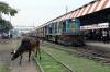 IZN YDM4 6531 waits departure from Pilibhit Jn with 52233 1410 Pilibhit Jn - Shahjahanpur