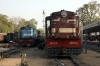 FL YDM4's 6694 & 6650 wait their next turns in the station yard at Jaipur Jct