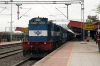 RTM WDM3D 11560 hammers into Dewas Jn with 19801 0630 Kota Jn - Indore Jn; almost 2 hours late
