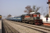 LDH WDM3A 16279 drops onto 54559 0915 Bathinda Jct - Fazilka Jct at Abohar, having run round to proceed via the newly opened line direct to Fazilka