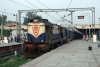MLDT WDM3A 16167 at Jalandhar City with 12407 0815 (12/10) New Jalpaiguri Jct - Amritsar