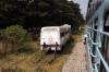 Old MG railbuses stabled at Sujathapuram