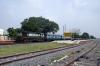 KJM WDM3A 14084 waits at Chinnasalem with 56513 0400 Nagore - Bangalore City