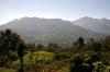 Between Jatinga & Mailongdisa, Assam