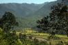 Between Mailongdisa & Harangajao, Assam, while travelling by passenger train 15693 0425 Lumding Jct - Silchar