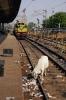Itarsi Jct Railway station, Madhya Pradesh