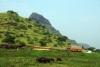 Ankai Hills near Manmad, Maharashtra