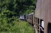 LMG YDM4 6457 leads 15693 0425 Lumding Jct - Silchar between Mailongdisa & Harangajao