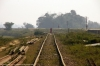Bhelwa, Bihar; where the last remaining section of the Narkatiaganj Jct - Darbhanga line now terminates
