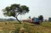 NKE YDM4 6465 arrives into Bhelwa with 52510 1000 Narkatiaganj Jct - Bhelwa